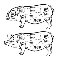 Pork cuts diagram and butchery set vector image