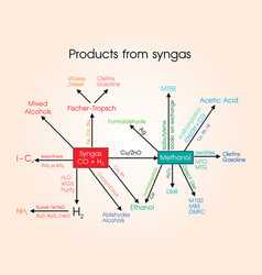 Products from syngas vector