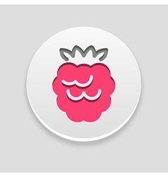 Raspberry icon fruit vector