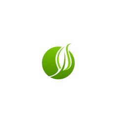 Round green leaf organic logo vector