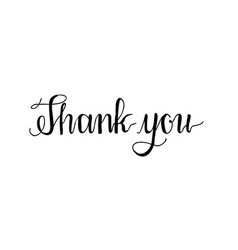 thank you hand written words calligraphy vector image