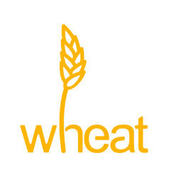 wheat lettering ear of rye and letters vector image