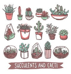 Succulents And Cacti Sketch Collection vector image vector image