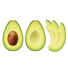 Avocado half of the fruit and cut into slices vector