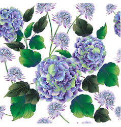 blue beautiful hydrangea on a white background vector image