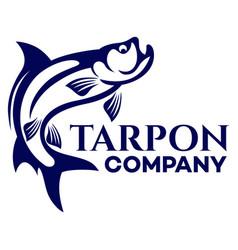 fish tarpon logo vector image