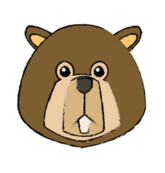 Portrait beaver cute face aquatic fluffy vector