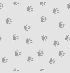 Track the bear paw vector