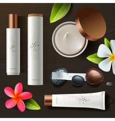 Natural spa cosmetics on wooden background vector image