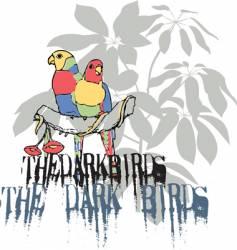 the dark birds vector image vector image