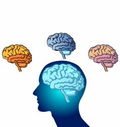 Brains vector