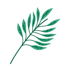 branch leaves foliage natural vegetation cartoon vector image