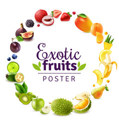 Exotic fruits round rainbow frame vector