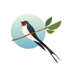 Flat icon of martlet sitting on branch with vector