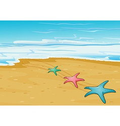 Three colorful starfishes in the beach vector