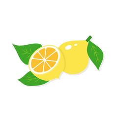 flat of lemon vector image