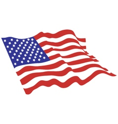 American flag color vector