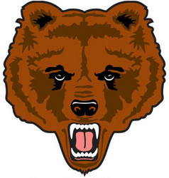 Bear head mascot logo vector