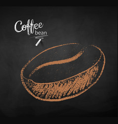 chalk drawn sketch of one coffee bea vector image