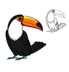 Exotic tropical toucan bird cartoon animal vector