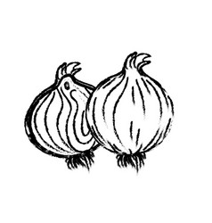 Figure fresh onion natural vegetable nutrition vector