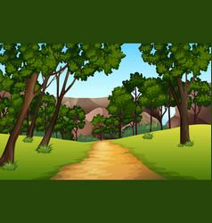 Forest pathway landscape scene vector