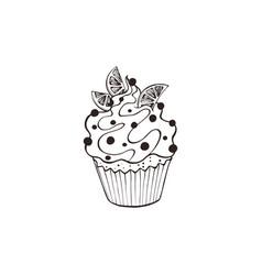 hand drawn cupcakes vector image