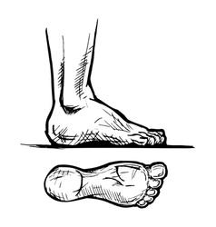 Footprints vector image