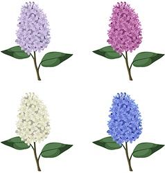 Lilac set vector