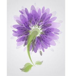 Abstract purple flower vector image