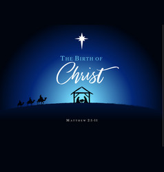 birth christ vector image
