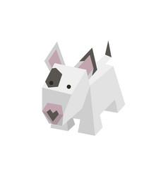 breed isometric bull terrier vector image