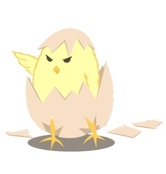 Leader-Chick vector