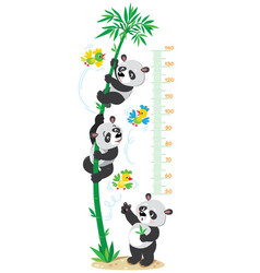 Meter wall with bamboo tree and funny pandas vector