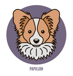 Portrait of papillon vector