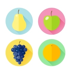 set flat design icons for fruits vector image