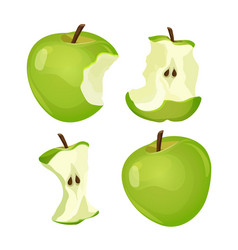 Stages of whole and bitten apple isolated on white vector