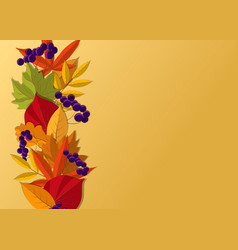 autumn background with fall leaves border design vector image