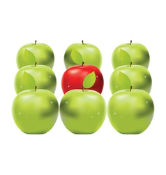 Red apple among green apples vector