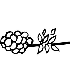 seamless ornament simple berry pattern vector image