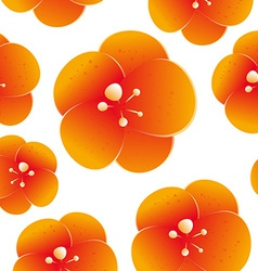 seamless pattern beautiful orange flowers vector image