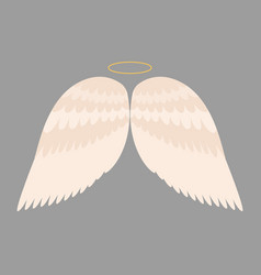 wings angel isolated animal feather pinion bird vector image vector image
