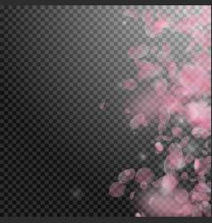 sakura petals falling down romantic pink vector image