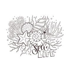 sea life composition vector image