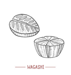 wagashi in hand drawn style vector image