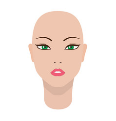 a beautiful dummy girl head vector image