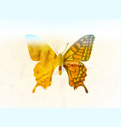 a butterfly in the style of vector image