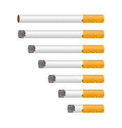Cigarette smoldering isolated on vector