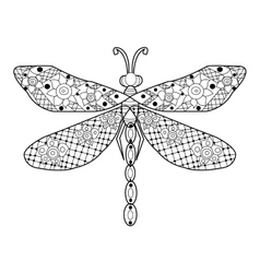 Dragonfly coloring for adults vector
