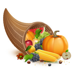 Full cornucopia for thanksgiving feast day rich vector